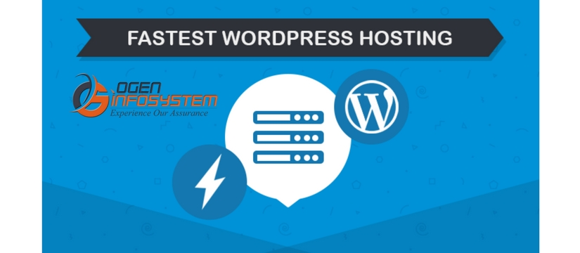 Choose a Fast Hosting Company